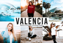Free Valencia Lightroom Preset