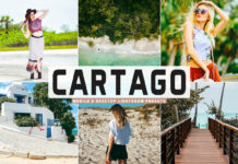 Free Cartago Lightroom Presets