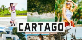 Free Cartago Lightroom Presets