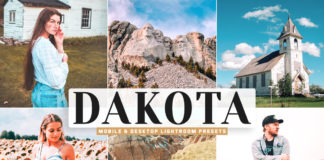 Free Dakota Lightroom Presets