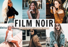 Free Film Noir Lightroom Presets