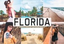 Free Florida Lightroom Presets