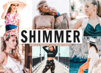Free Shimmer Lightroom Presets