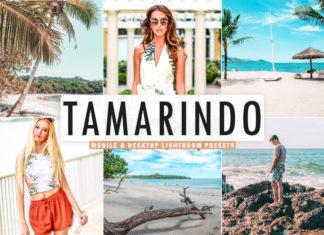 Free Tamarindo Lightroom Presets