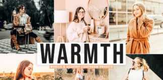 Free Warmth Lightroom Presets