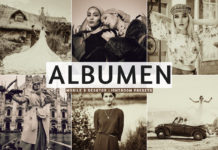 Free Albumen Lightroom Presets