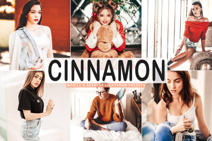 Free Cinnamon Lightroom Presets