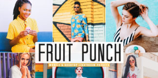 Free Fruit Punch Lightroom Presets