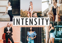 Free Intensity Lightroom Presets