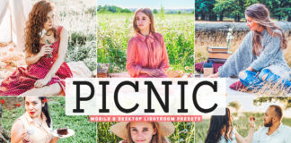 Free Picnic Lightroom Presets