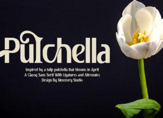 Free Pulchella Sans Serif Font