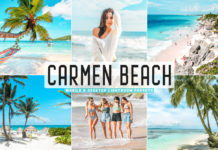 Free Carmen Beach Lightroom Presets