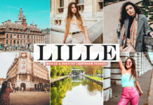 Free Lille Lightroom Presets
