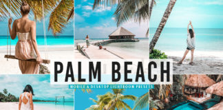 Free Palm Beach Lightroom Presets