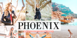 Free Phoenix Lightroom Presets