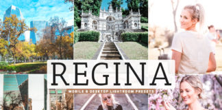 Free Regina Lightroom Presets
