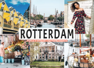 Free Rotterdam Lightroom Presets