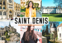 Free Saint Denis Lightroom Presets