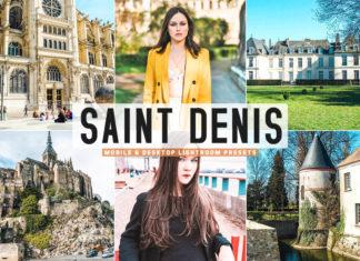 Free Saint Denis Lightroom Presets
