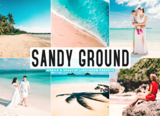 Free Sandy Ground Lightroom Presets