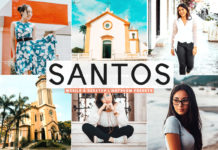Free Santos Lightroom Presets