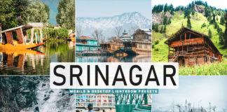 Free Srinagar Lightroom Presets