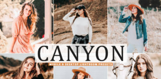 Free Canyon Lightroom Presets