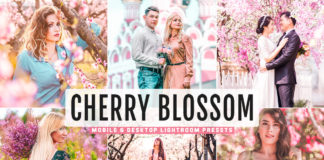 Free Cherry Blossom Lightroom Presets