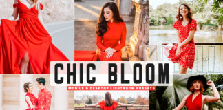 Free Chic Bloom Lightroom Presets