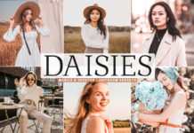 Free Daisies Lightroom Presets