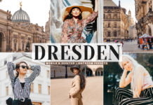 Free Dresden Lightroom Presets