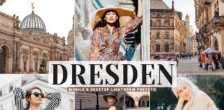 Free Dresden Lightroom Presets