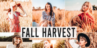 Free Fall Harvest Lightroom Presets