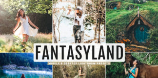 Free Fantasyland Lightroom Presets