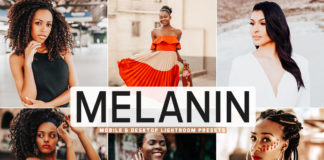 Free Melanin Lightroom Presets