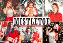 Free Mistletoe Lightroom Presets