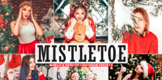 Free Mistletoe Lightroom Presets