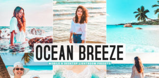 Free Ocean Breeze Lightroom Presets