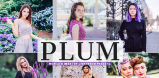 Free Plum Lightroom Presets