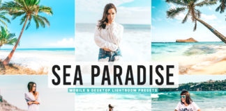 Free Sea Paradise Lightroom Presets