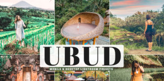 Free Ubud Lightroom Presets