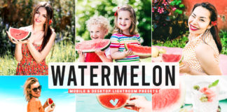 Free Watermelon Lightroom Presets