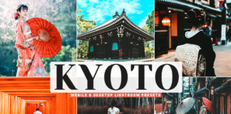 Free Kyoto Lightroom Presets