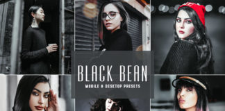 Free Black Bean Lightroom Presets