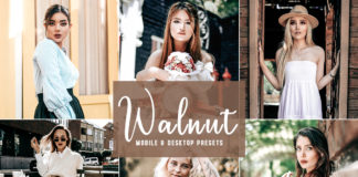 Free Walnut Lightroom Presets