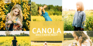 Free Canola Lightroom Presets