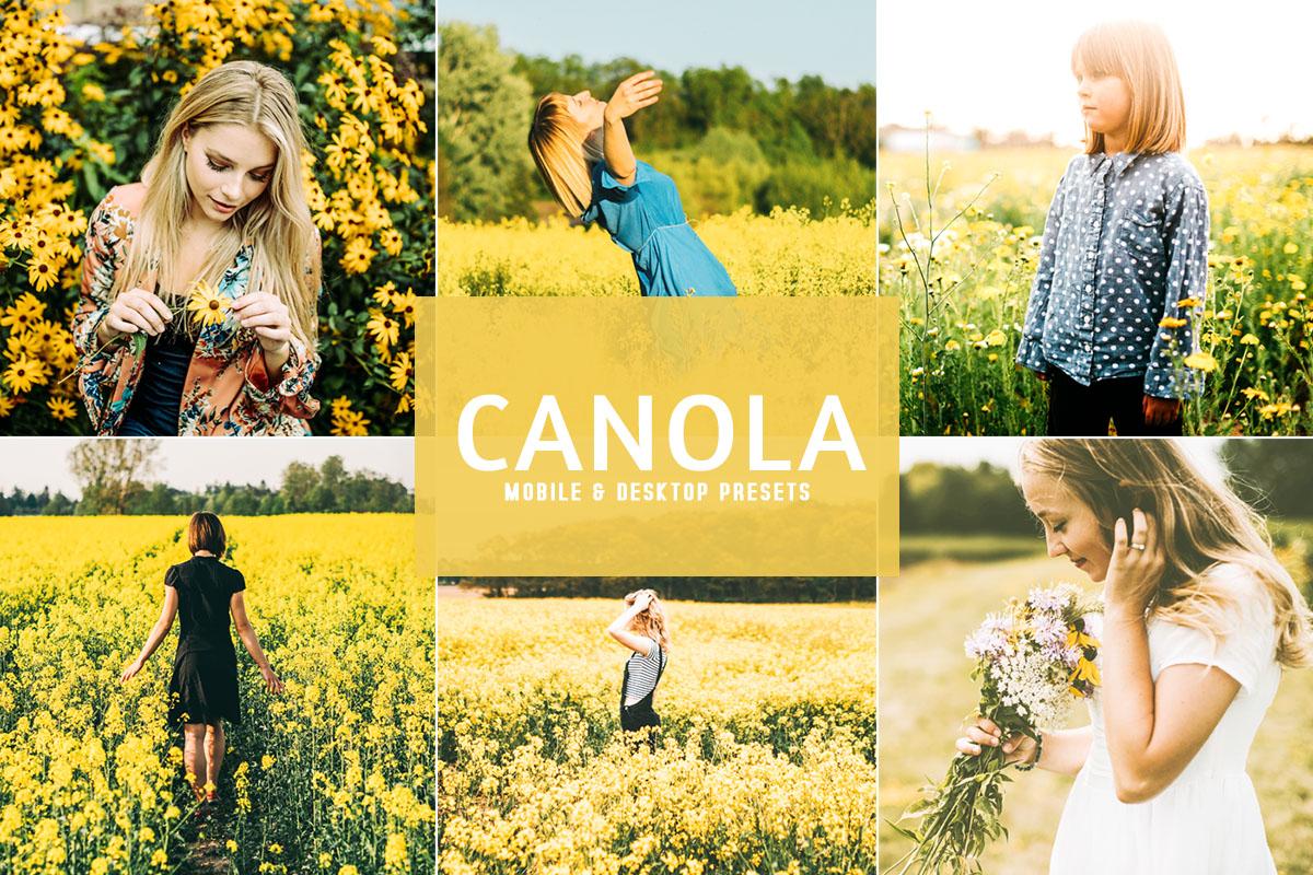 Free Canola Lightroom Presets