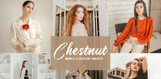 Free Chestnut Lightroom Presets
