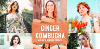 Free Ginger Kombucha Lightroom Presets