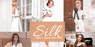 Free Silk Lightroom Presets
